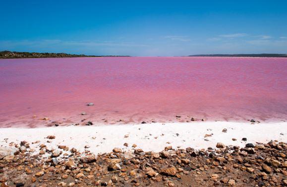 Pink-Lake.jpg