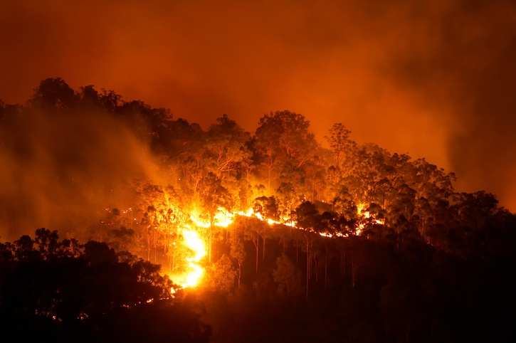 http://blog.coerco.com.au/blog/13-tips-to-surviving-a-bushfire-at-home-with-fire-fighting-equipment