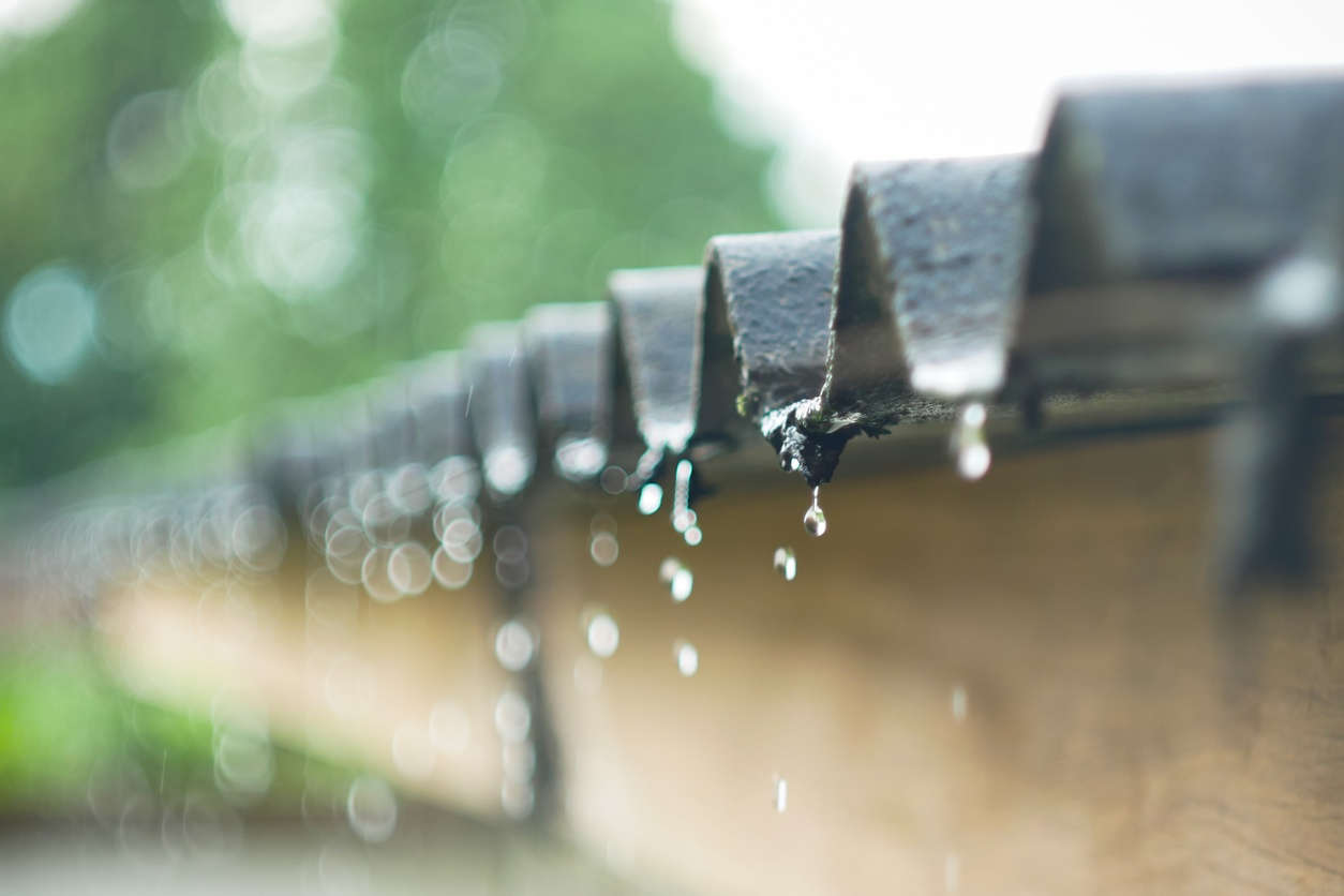 Rainwater Harvesting: A Complete List of Benefits